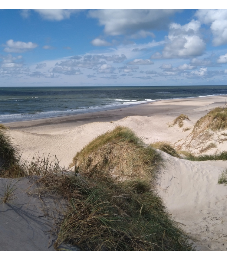 a landscape view of a beach and blue skies