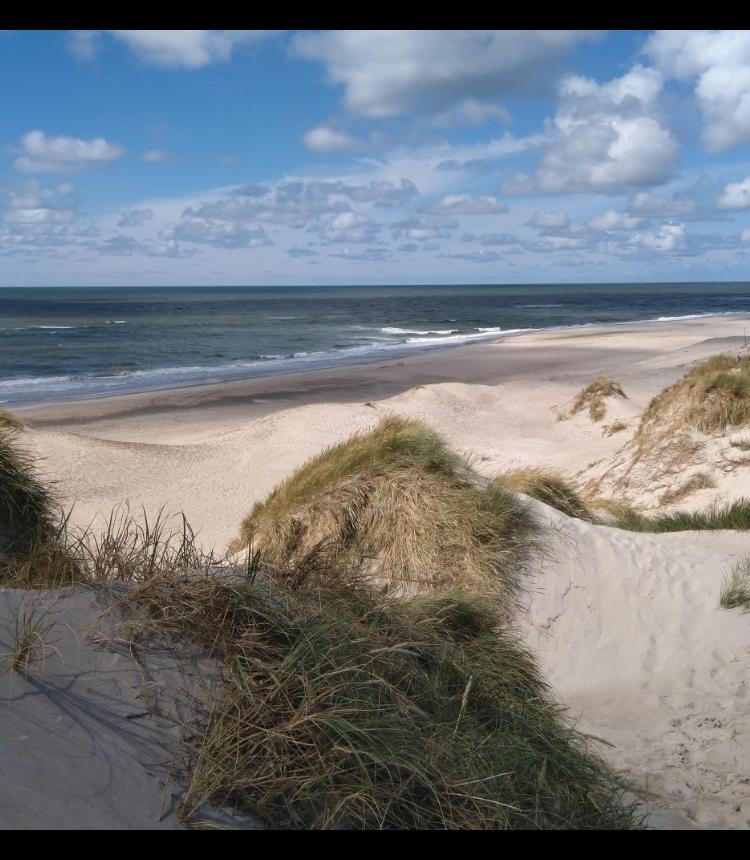 ビーチと青い空の風景