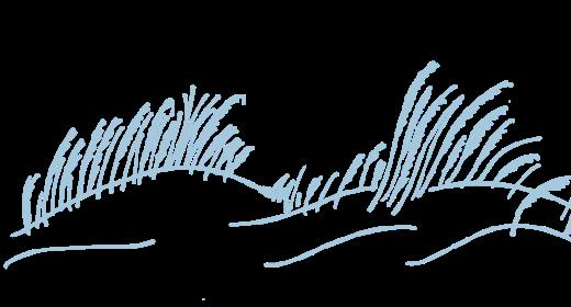 Handgezeichnete Grasillustration