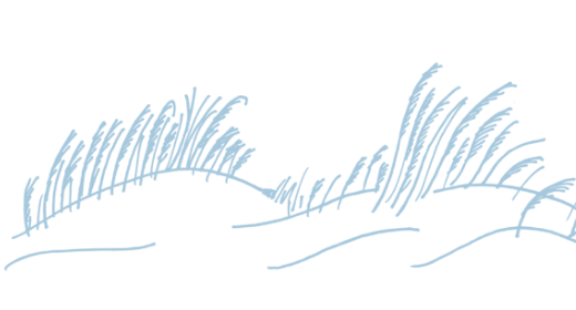 hand-drawn illustration grass